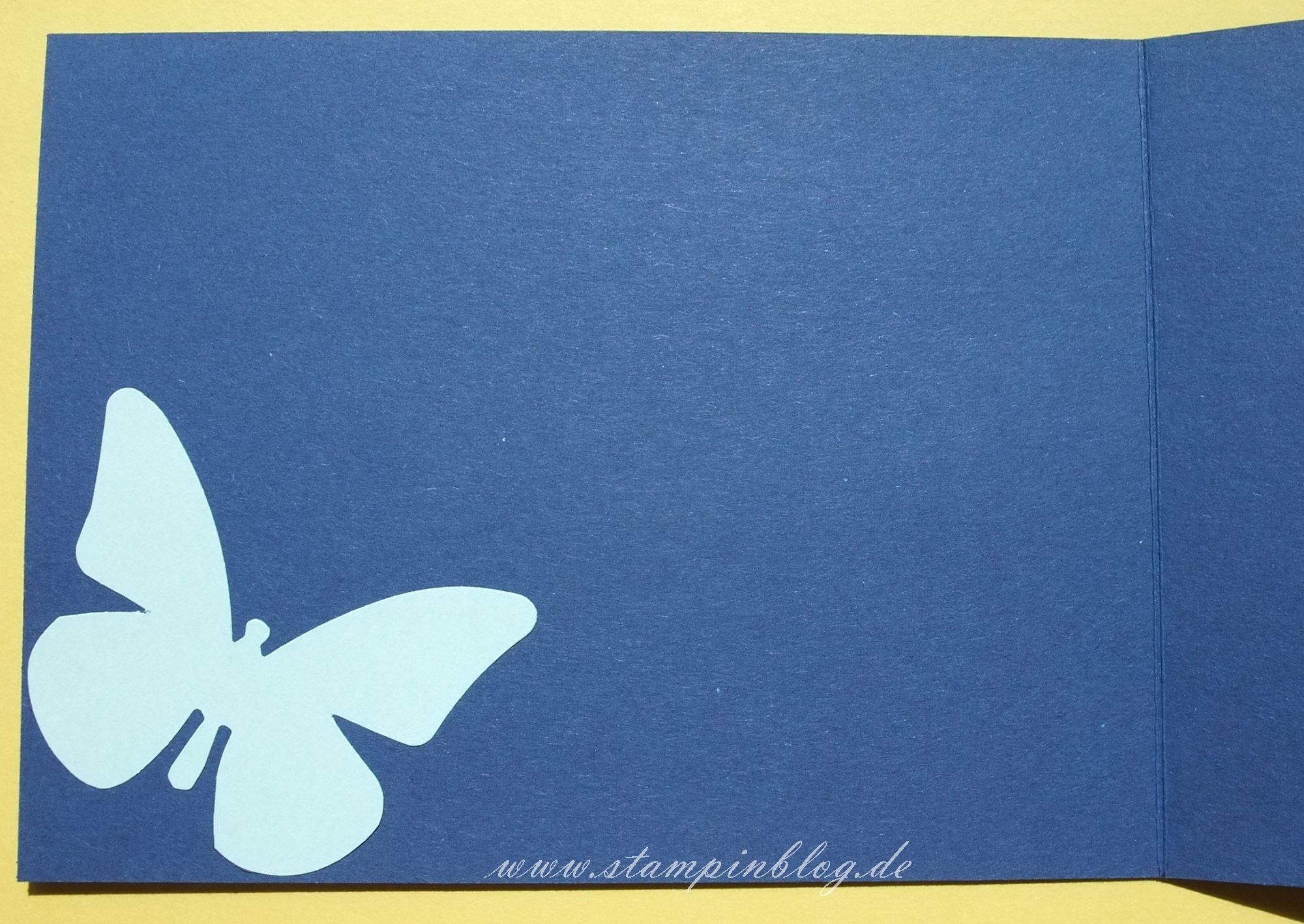 Geburtstag-Schmetterlinge-blau-uni-3