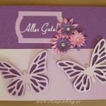 Schmetterlinge für Dich