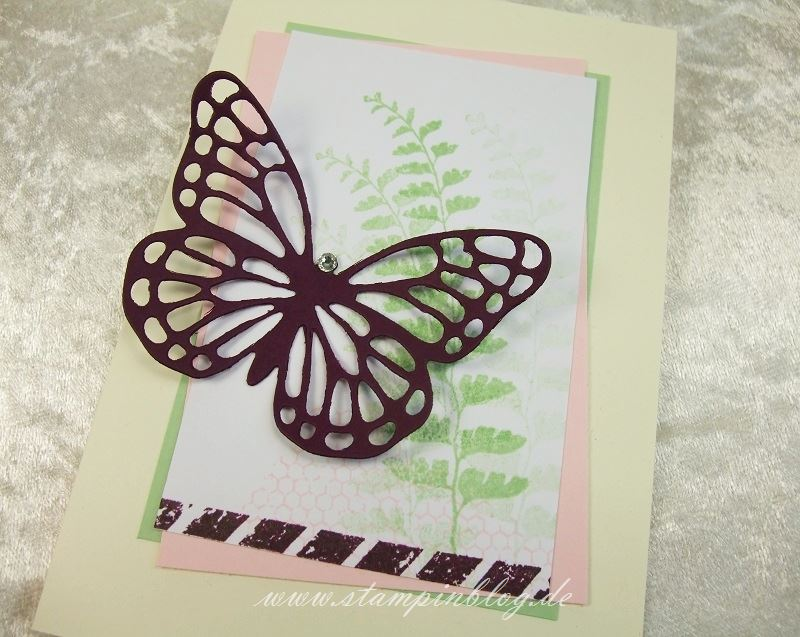 Muttertag-Geburtstag-Schmetterlingsgruss-Brombeermousse-Stampin-2