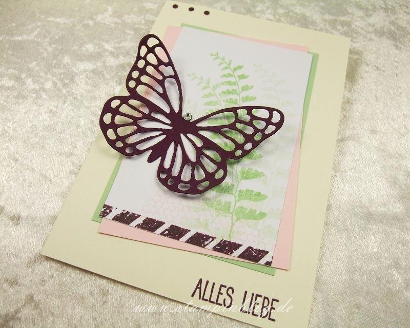 Muttertag-Geburtstag-Schmetterlingsgruss-Brombeermousse-Stampin-3