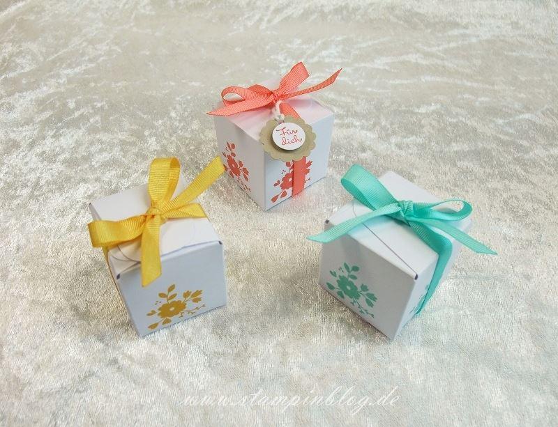 Box-Schachtel-Goodies-klein-Falzbrett-Geschenktüten-Anleitung-Stampinblog-Stampin