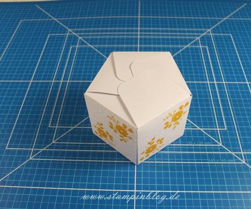 Goodie-Gastgeschenk-Box-Schachtel-Pentagon-Falzbrett-Geschenktüten-Stampinblog-Stampin