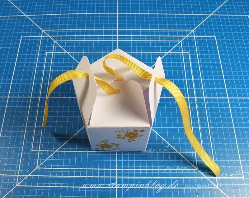 Goodie-Gastgeschenk-Schachtel-Pentagon-Verschluss-2-Falzbrett-Geschenktüten-Stampinblog-Stampin