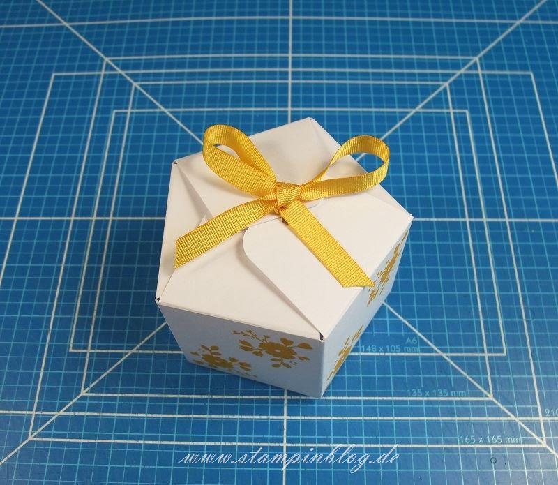 Goodie-Gastgeschenk-Schachtel-Pentagon-Verschluss-4-Falzbrett-Geschenktüten-Stampinblog-Stampin