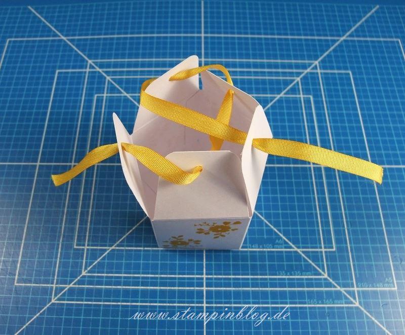 Goodie-Gastgeschenk-Schachtel-Pentagon-Verschluss-Falzbrett-Geschenktüten-Stampinblog-Stampin