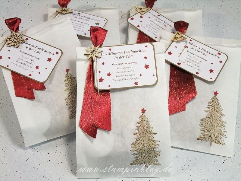 Verpackung-Weihnachten-15- Minuten-Tüte-Tannenbaum-Savanne-Chili-Stampinblog-Stampin