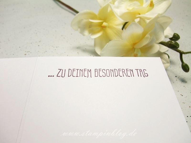 Geburtstag-Blumen-für-Dich-SAB-Wildblumenwiese-silber-brombeermousse-Stampinblog-Stampin