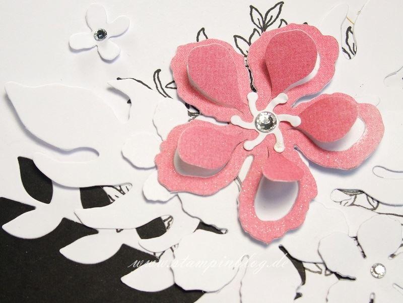 Gebrutstag-Karte-Botanical-Blooms-Blume-schwarz-weiß-curry-gelb-Wink-Stella-Stampinblog-Stampin