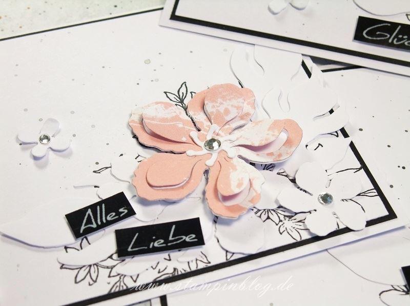 Geburtstag-Glückwunsch-Blumen-schwarz-weiß-kirschblüte-Botanical-Blooms-Awesomely-Stampinblog-Stampin