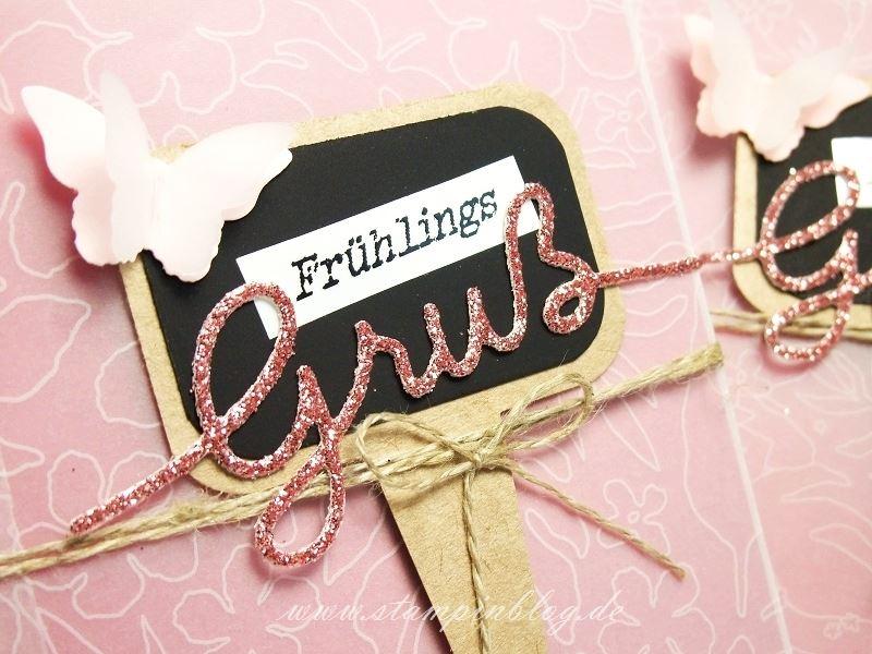 Verpackung-Goodies-Leckereientüte-Blumensaamen-Kräuter-Schmetterling-Gruß-Stampinblog-Stampin