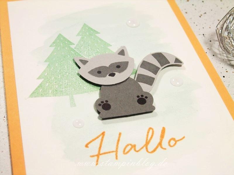Grüße-Waschbär-Fuchs-Foxy-Friends-Hallo-Pfirsich-Pur-Stampinblog-Stampin