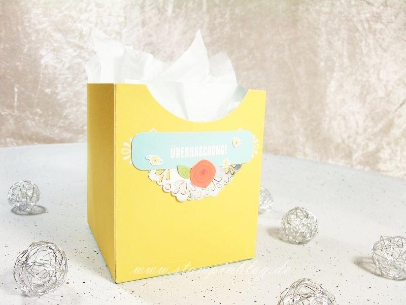 Kartenset-Kreativ-Kuvertiert-Box-Schachtel-Stampinblog-Stampin