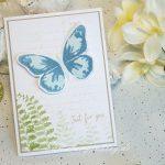 Frühlingsgruß mit Schmetterling