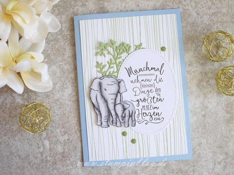 Im Babyglück: Elefanten zur Geburt