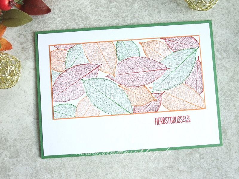 Herbstgruss - Bunte Blätter